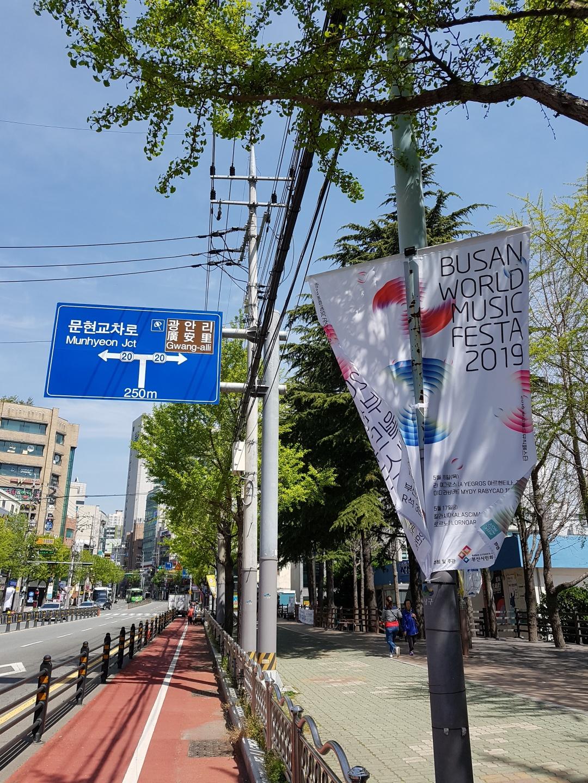 festa_banner01